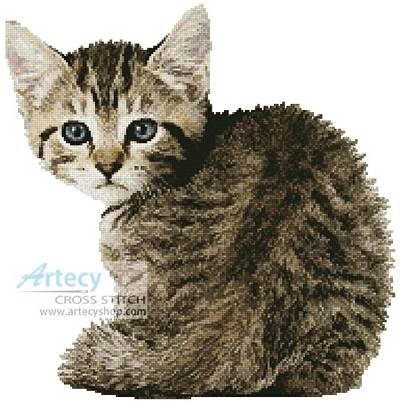 cross stitch pattern Timid Kitten