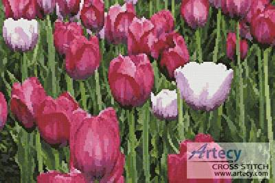 cross stitch pattern Tulips photo