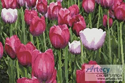 cross stitch pattern Tulips photo