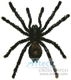cross stitch pattern White Toe Tarantula