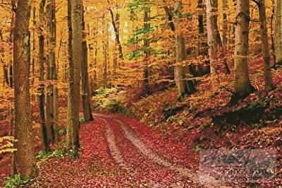 cross stitch pattern Autumn Path