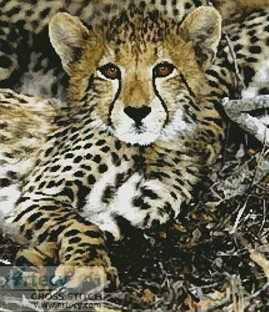 cross stitch pattern Baby Cheetah