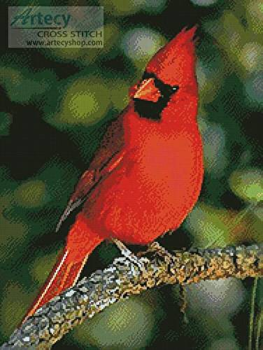 cross stitch pattern Cardinal Photo