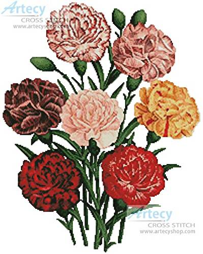 cross stitch pattern Carnations
