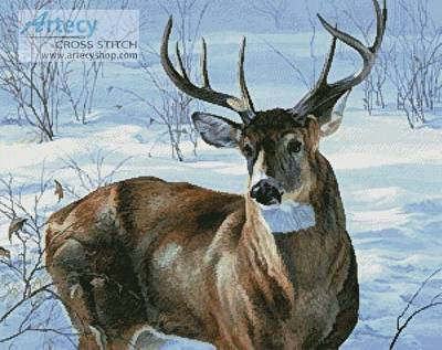 cross stitch pattern Whitetail Buck