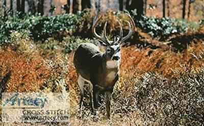 cross stitch pattern Deer in Forest