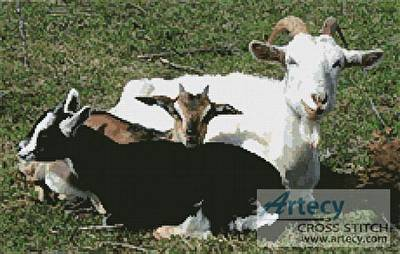 cross stitch pattern Goats