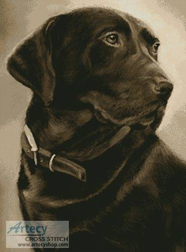 cross stitch pattern Chocolate Labrador
