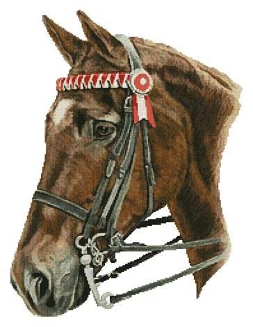 cross stitch pattern Horse Profile