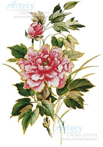 cross stitch pattern Antique Rose