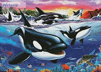 cross stitch pattern Killer Whales