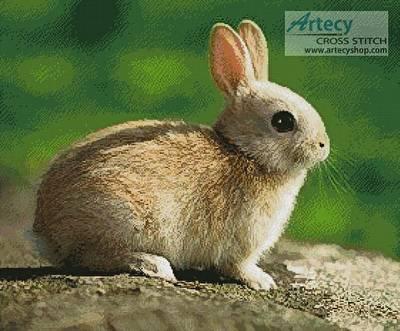 cross stitch pattern Little Rabbit
