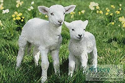 cross stitch pattern Easter Lambs