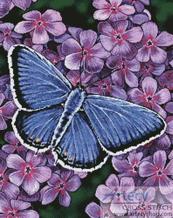 cross stitch pattern Eastern Tailed Blue Butterfly