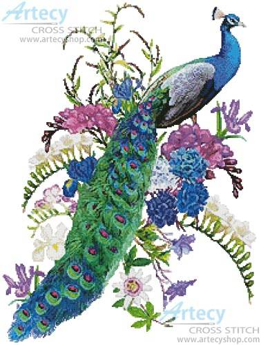 cross stitch pattern Proud as a Peacock
