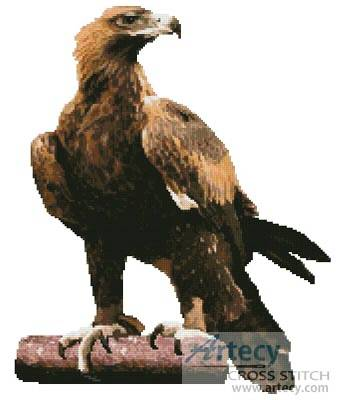 cross stitch pattern Wedge Tail Eagle