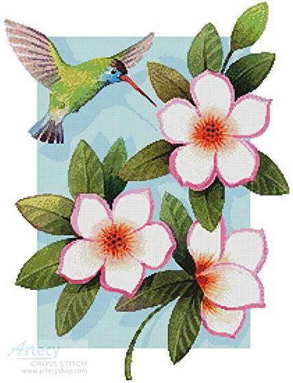 cross stitch pattern Beija Flor White