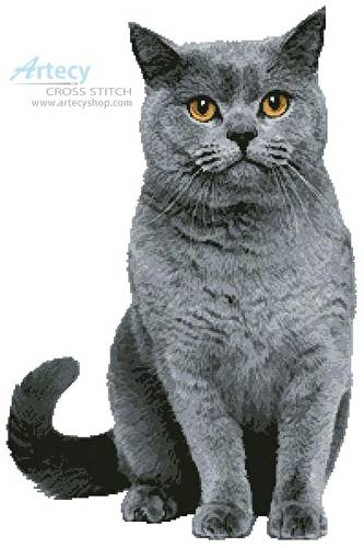 cross stitch pattern British Shorthair Cat