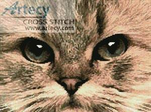 cross stitch pattern Cat Close Up