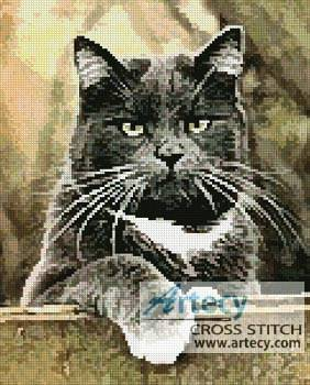 cross stitch pattern Cat on a Fence