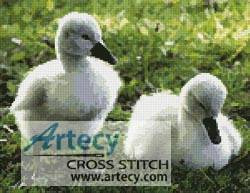cross stitch pattern Cygnets