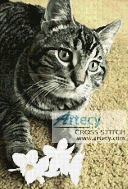 cross stitch pattern Flower Cat