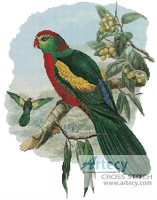 cross stitch pattern King Parrot 2