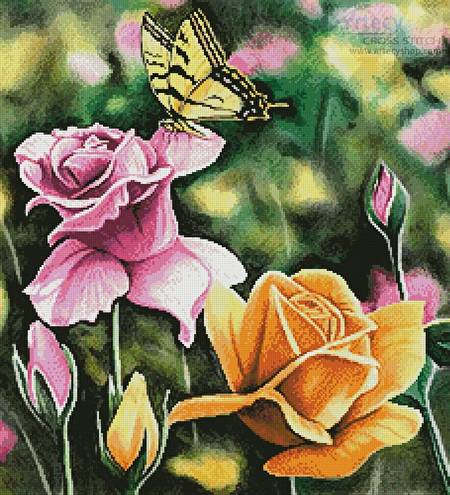 cross stitch pattern Tiger Swallow Tail in Rose Garden