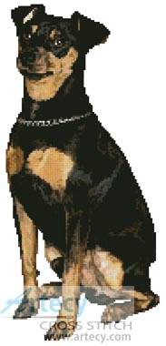 cross stitch pattern Miniature Pinscher