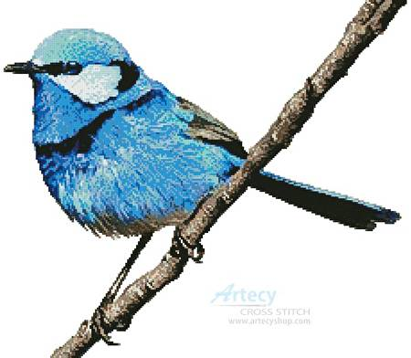 cross stitch pattern Male Splendid Fairy Wren 2