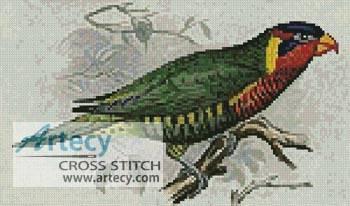 cross stitch pattern Ornate Lorikeet