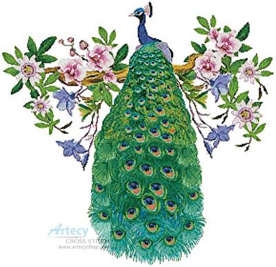 cross stitch pattern Peacock with Passionflower