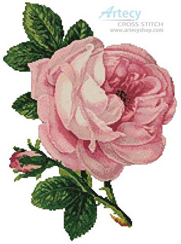 cross stitch pattern Pink Rose and Bud