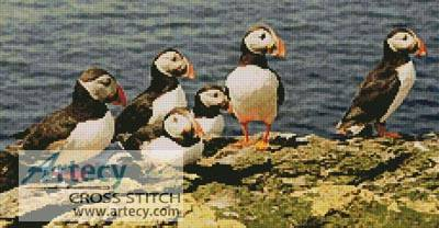 cross stitch pattern Puffins 2