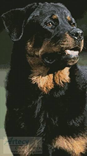 cross stitch pattern Rottweiler Photo