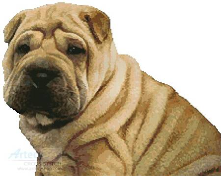 cross stitch pattern Shar-Pei