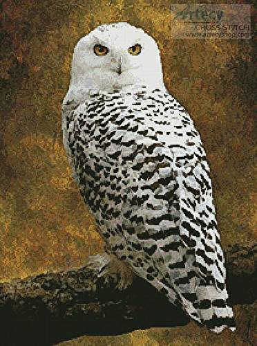 cross stitch pattern Snowy Owl