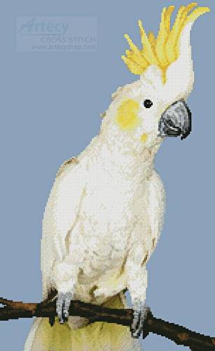 cross stitch pattern Sulphur Crested Cockatoo