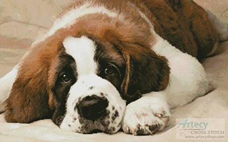 cross stitch pattern St Bernard Photo