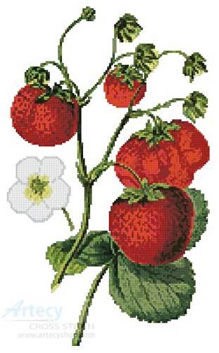 cross stitch pattern Strawberries