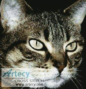 cross stitch pattern Tabby Cat