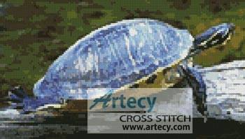 cross stitch pattern Turtle Photo