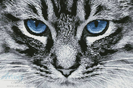 cross stitch pattern Blue Eyes 2
