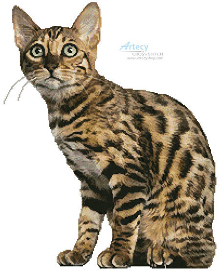 cross stitch pattern Bengal Cat