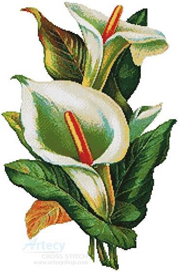 cross stitch pattern Calla Lilies 2