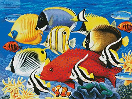 cross stitch pattern Coral Fish
