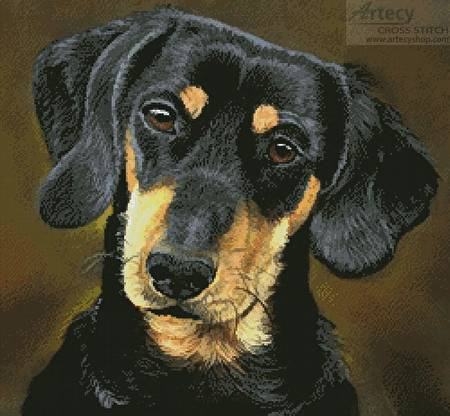 cross stitch pattern Dachshund Portrait