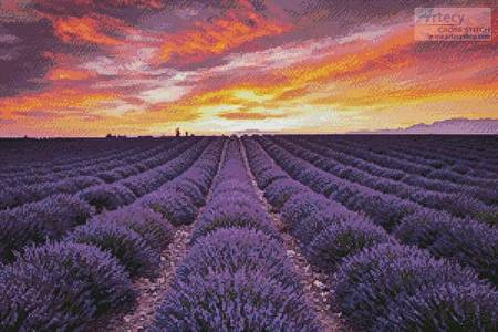 cross stitch pattern Field of Lavender at Sunrise