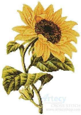 cross stitch pattern Golden Sunflower