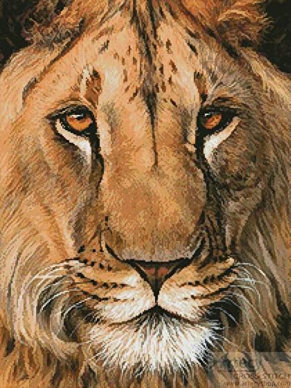 cross stitch pattern Lion Portrait
